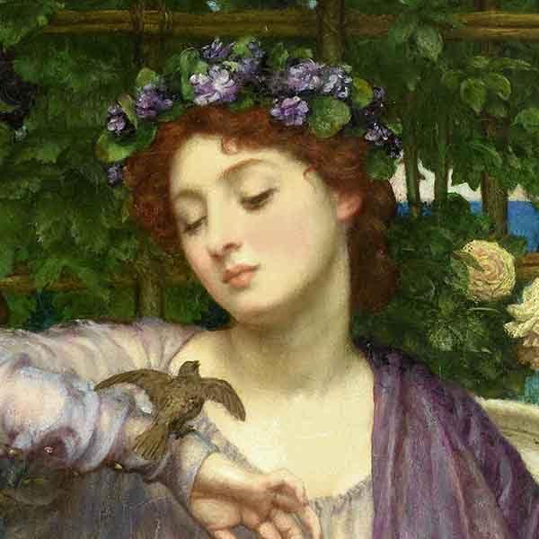 Lesson 16 - Catullus Gets the Bird